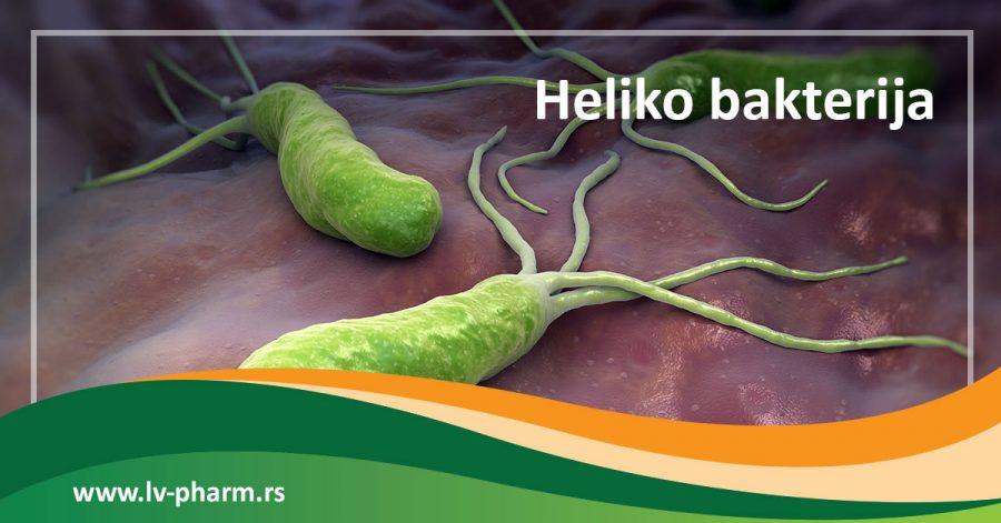 Heliko bakterija